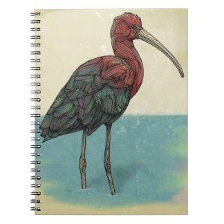 """Ibis"" Notebook"