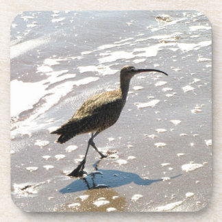 Ibis on the Beach Drink Coaster