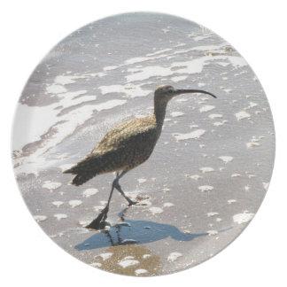 Ibis on the Beach Melamine Plate