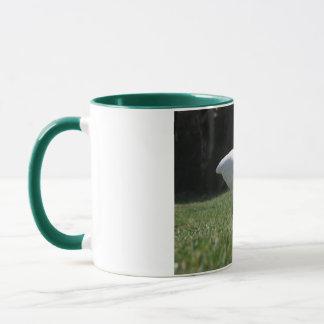 Ibis on the prowl mug