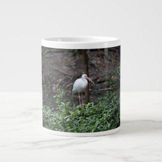 Ibis que se coloca en arbusto taza de café gigante