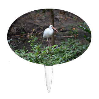 ibis standing on bush cake toppers