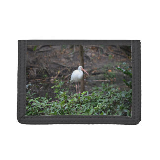 ibis standing on bush trifold wallets