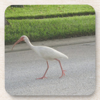 Ibis Walking Cork Coaster