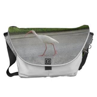 Ibis Walking Large Messenger Bag