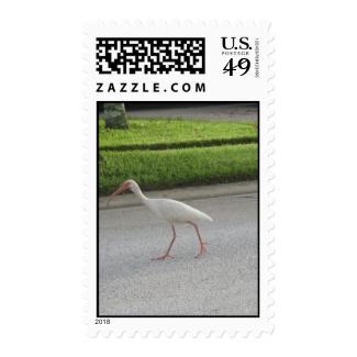 Ibis Walking Postage