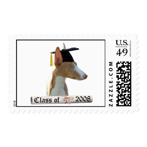 Ibizan Hound Grad08 Postage Stamps