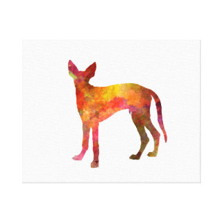 Ibizan Hound in watercolor Canvas Print