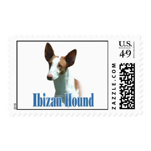 Ibizan Hound Name Postage Stamps
