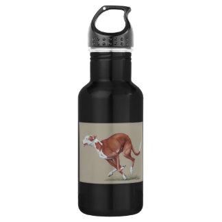 Ibizan Hound Running Dog Art Watr Bottle