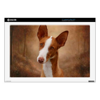 Ibizan Hound Decal For Laptop