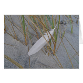 IBSP Seagull Feather in Dune Grass Note Card