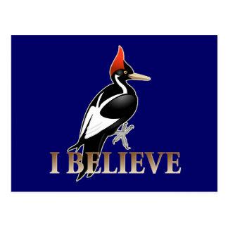 IBWO: I Believe Postcard