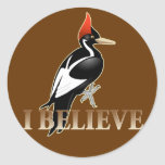 IBWO: I Believe Sticker