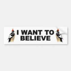Bumper Sticker with I Want To Believe design