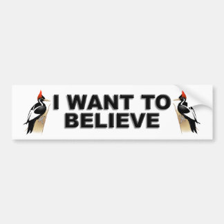 IBWO: I Want To Believe Bumper Sticker