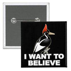 Square Button with I Want To Believe design