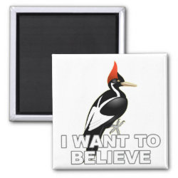 Square Magnet with I Want To Believe design