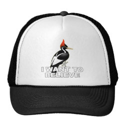 Trucker Hat with I Want To Believe design