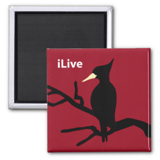 IBWO: iLive 2 Inch Square Magnet