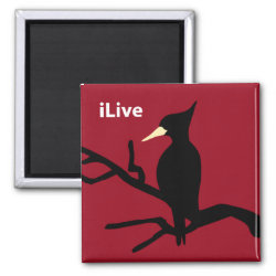 Square Magnet with iLive design