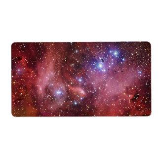 IC 2944 Running Chicken Nebula Lambda Cen Nebula Label