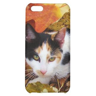 iCat case 3 iPhone 5C Cases