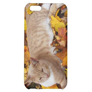 iCat case 4 iPhone 5C Cases