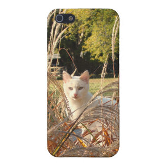 iCat case 5 Cover For iPhone 5
