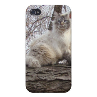iCat case 7 Case For iPhone 4