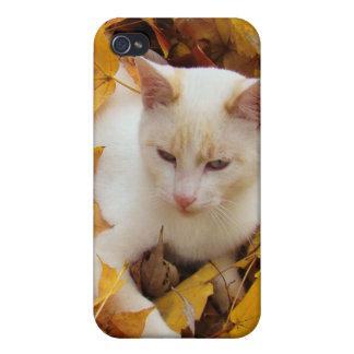 iCat case iPhone 4 Case