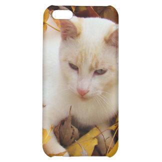 iCat case iPhone 5C Cases