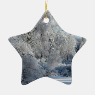 ice2.jpg ceramic ornament