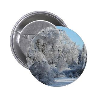 ice2.jpg pins