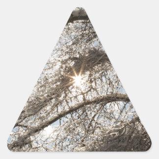 Ice and Snow Triangle Sticker