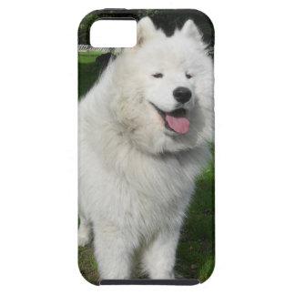 ice bear iPhone SE/5/5s case