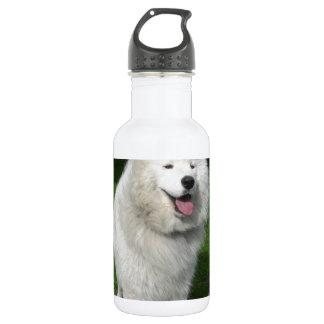 ice bear stainless steel water bottle