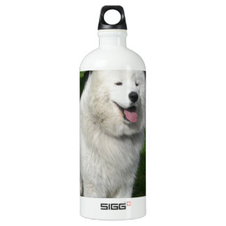 Ice bears... aluminum water bottle