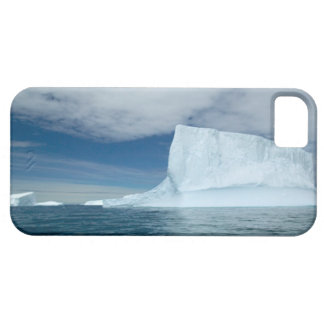 Ice Bergs off of the southern tip of South 2 iPhone SE/5/5s Case
