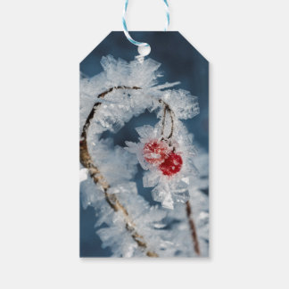 Ice Berries Gift Tags