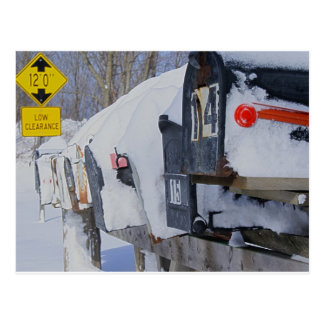 Ice Box Post Cards