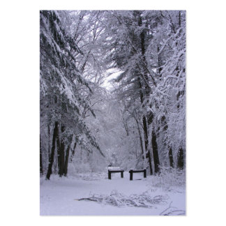 Ice Cathedral ~ ATC Large Business Cards (Pack Of 100)