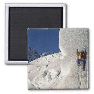 Ice climbing on the Tasman Glacier below Mount Fridge Magnet