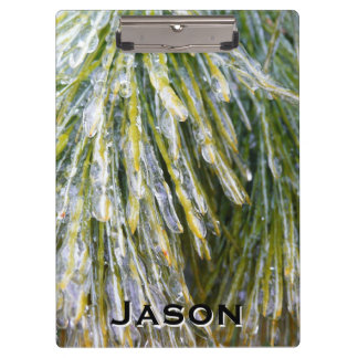 Ice Coated Pine Needles Winter Nature Photography Clipboard