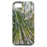 Ice-Coated Pine Needles Winter Nature Photography iPhone SE/5/5s Case