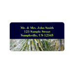 Ice-Coated Pine Needles Winter Nature Photography Label
