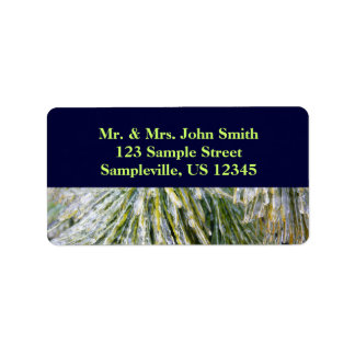 Ice Coated Pine Needles Winter Nature Photography Label