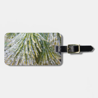 Ice Coated Pine Needles Winter Nature Photography Luggage Tag