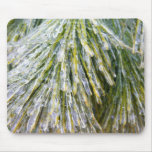 Ice-Coated Pine Needles Winter Nature Photography Mouse Pad