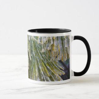 Ice-Coated Pine Needles Winter Nature Photography Mug